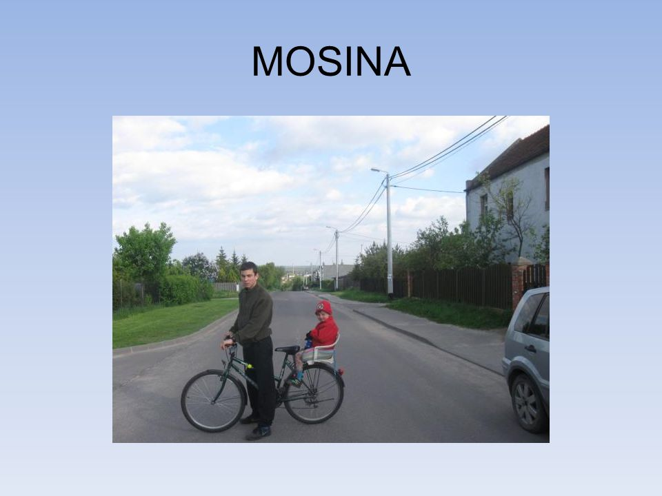 MOSINA
