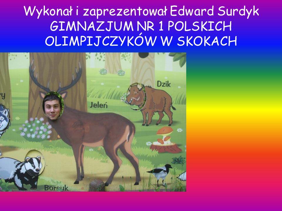 Wykonał i zaprezentował Edward Surdyk GIMNAZJUM NR 1 POLSKICH OLIMPIJCZYKÓW W SKOKACH