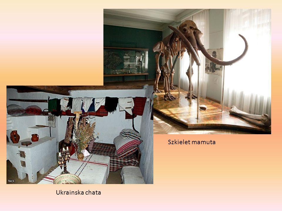 Szkielet mamuta Ukrainska chata