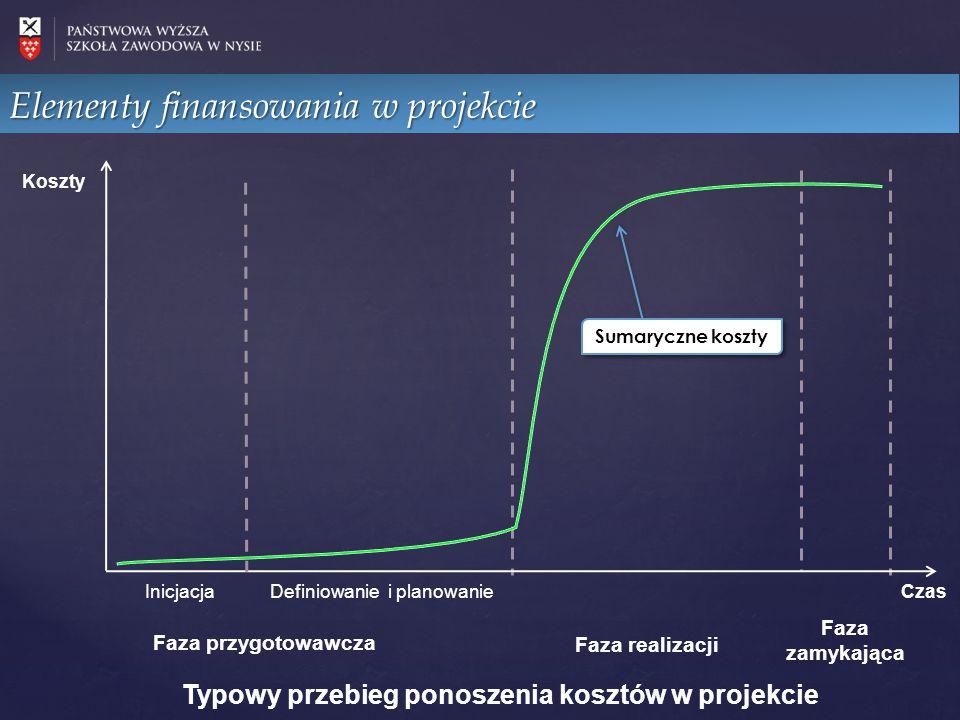 Elementy finansowania w projekcie