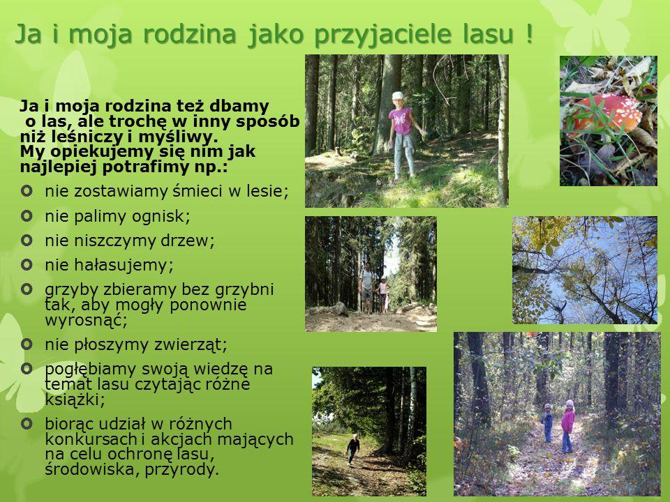 Ja i moja rodzina jako przyjaciele lasu !