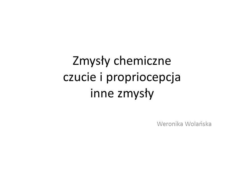 Zmysły chemiczne czucie i propriocepcja inne zmysły