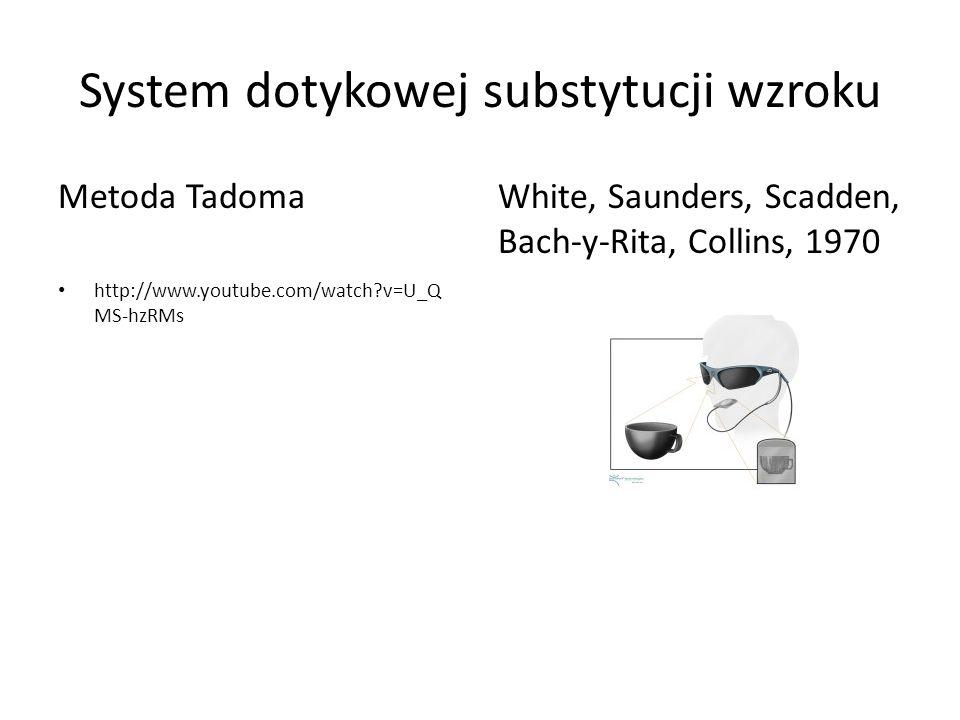 System dotykowej substytucji wzroku