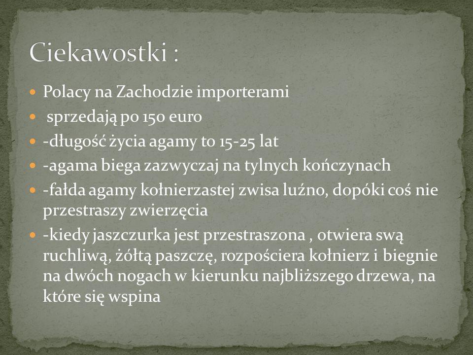 Ciekawostki : Polacy na Zachodzie importerami sprzedają po 150 euro