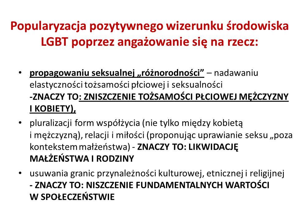 Popularyzacja pozytywnego wizerunku środowiska LGBT poprzez angażowanie się na rzecz: