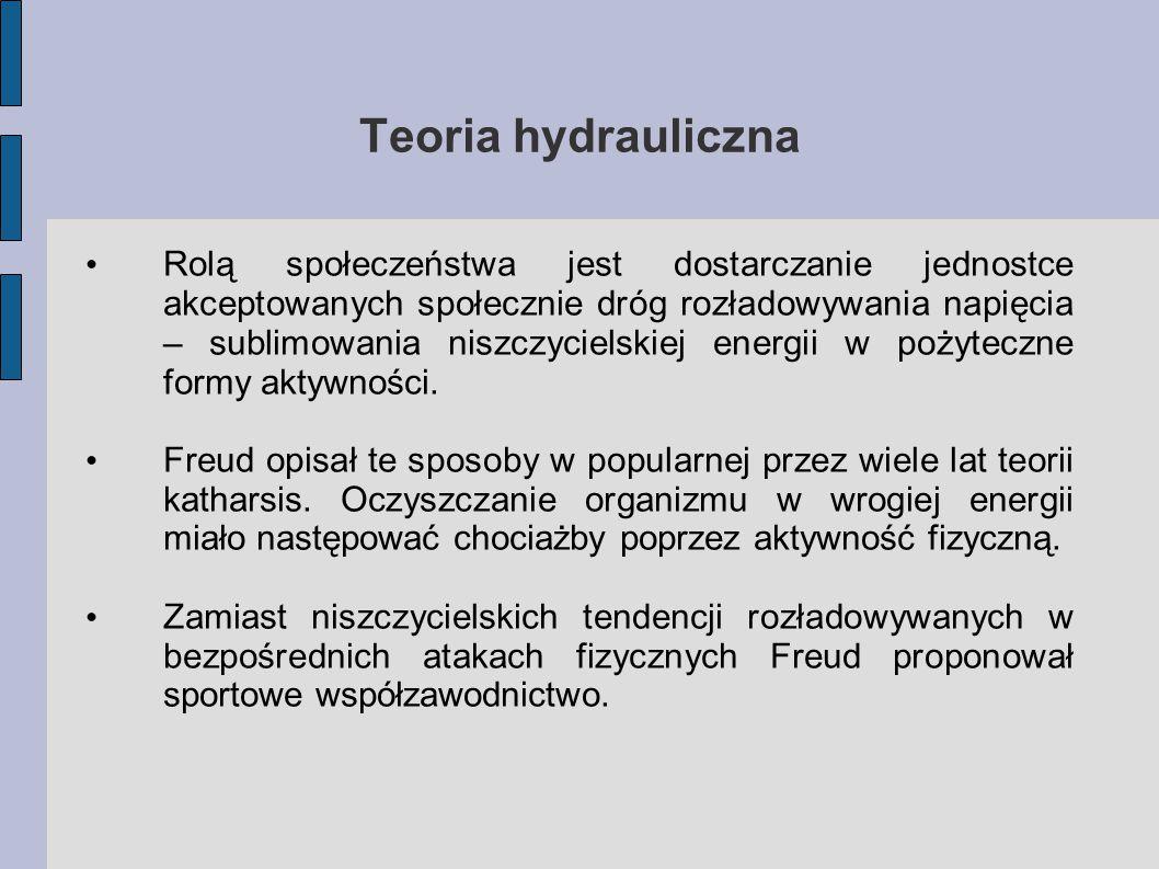 Teoria hydrauliczna