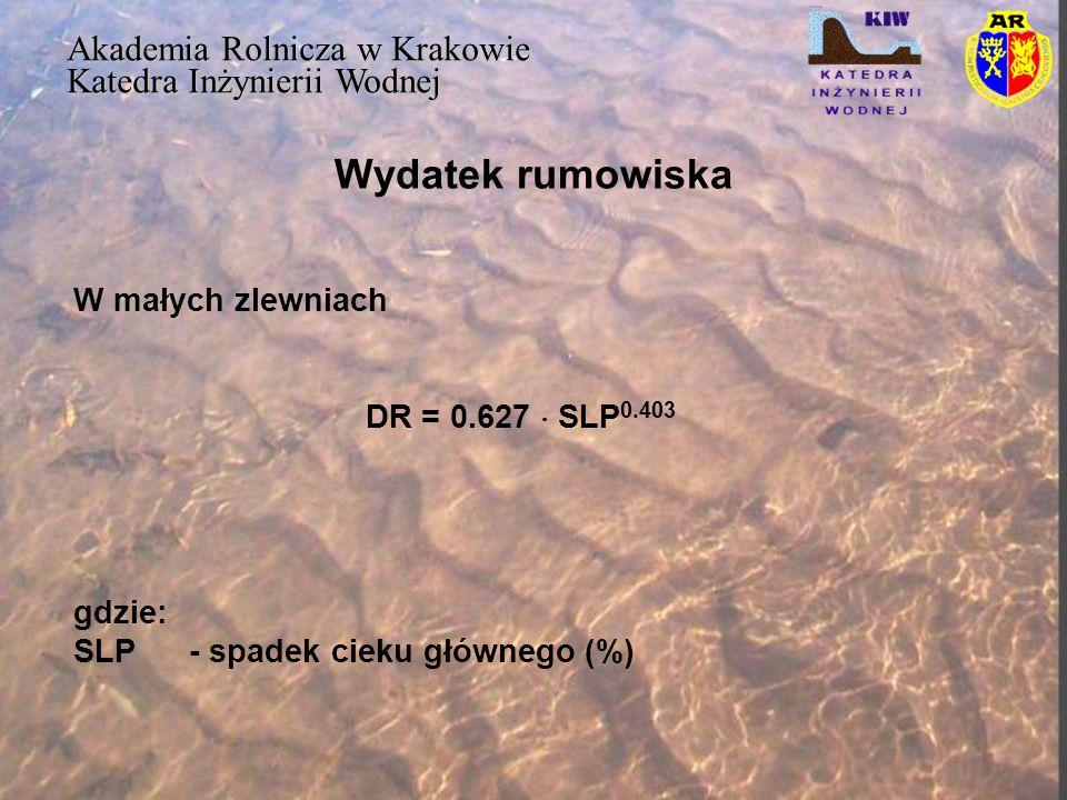 Wydatek rumowiska Akademia Rolnicza w Krakowie