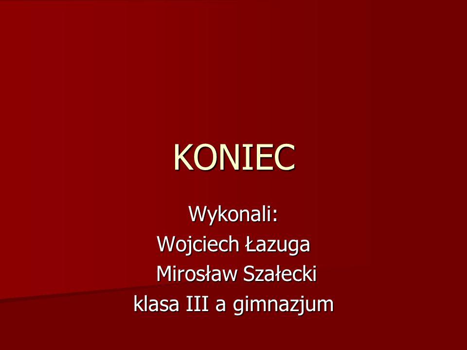 Wykonali: Wojciech Łazuga Mirosław Szałecki klasa III a gimnazjum