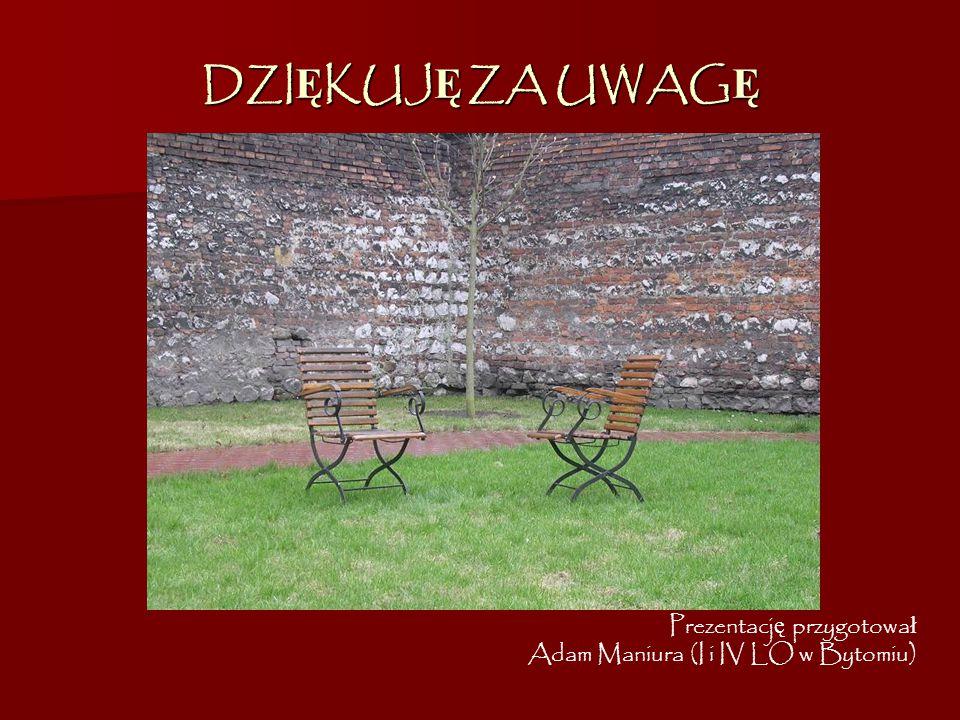 DZIĘKUJĘ ZA UWAGĘ Prezentację przygotował Adam Maniura (I i IV LO w Bytomiu)