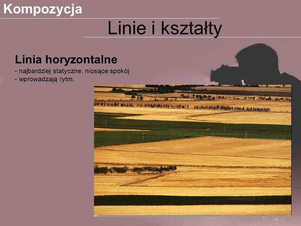 Linie i kształty Kompozycja Linia horyzontalne