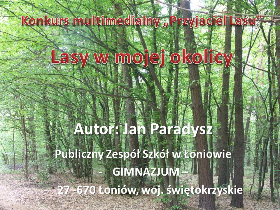 Lasy w mojej okolicy Autor: Jan Paradysz