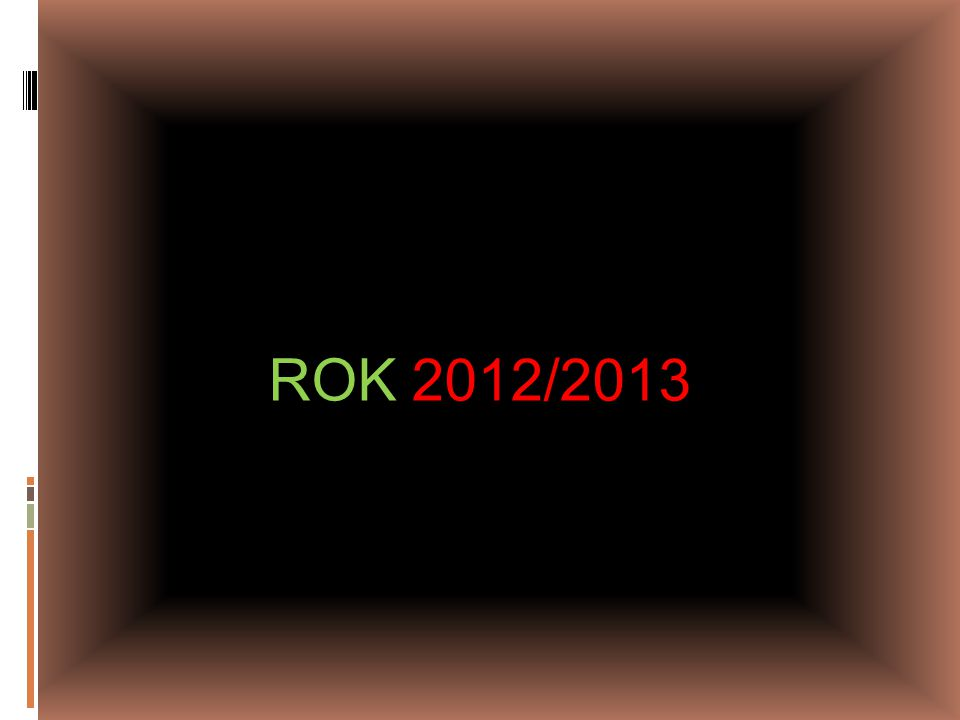 ROK 2012/2013