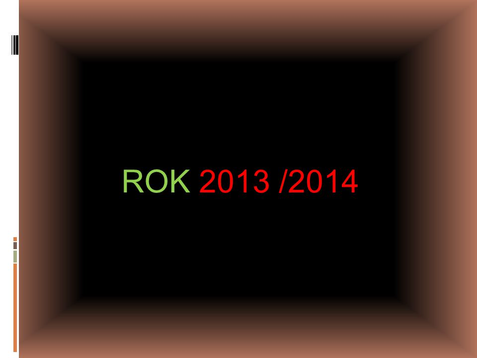 ROK 2013 /2014