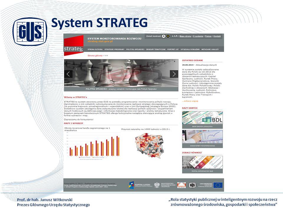 System STRATEG Prof. dr hab. Janusz Witkowski