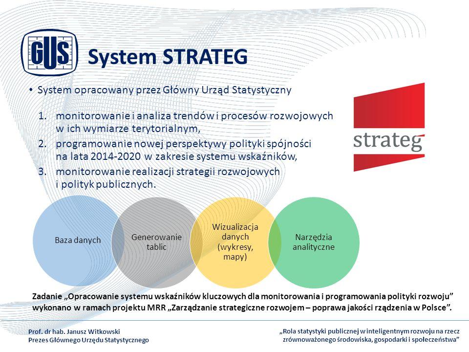 System STRATEG System opracowany przez Główny Urząd Statystyczny