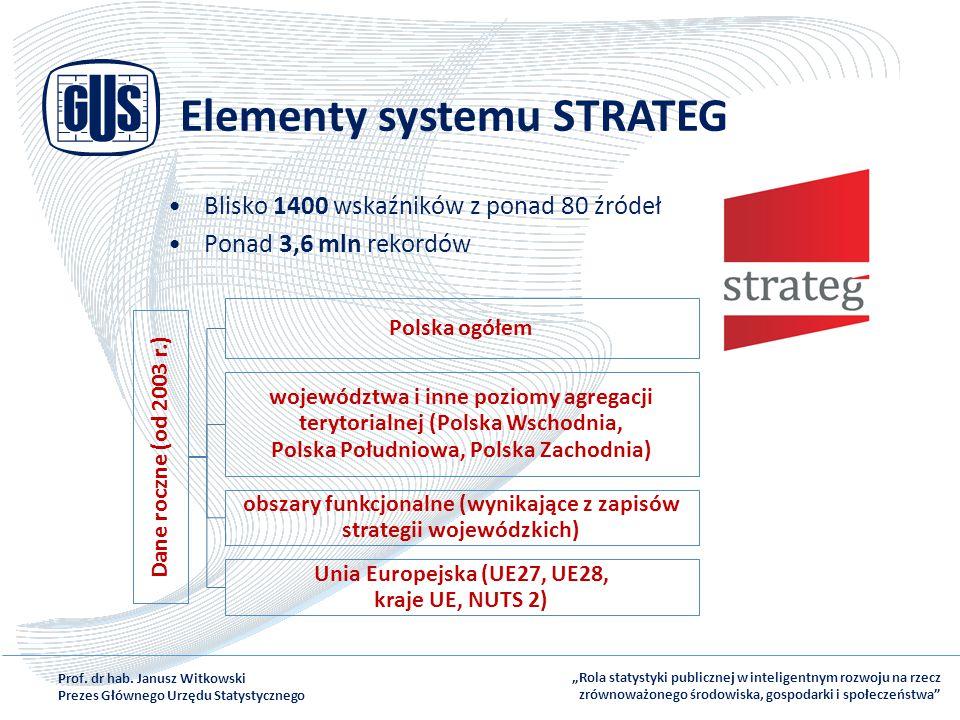Elementy systemu STRATEG