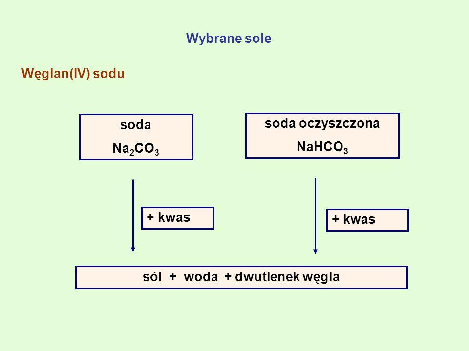 sól + woda + dwutlenek węgla