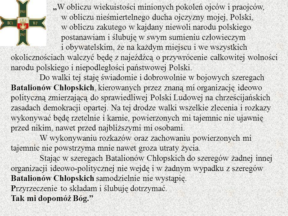 w obliczu nieśmiertelnego ducha ojczyzny mojej, Polski,