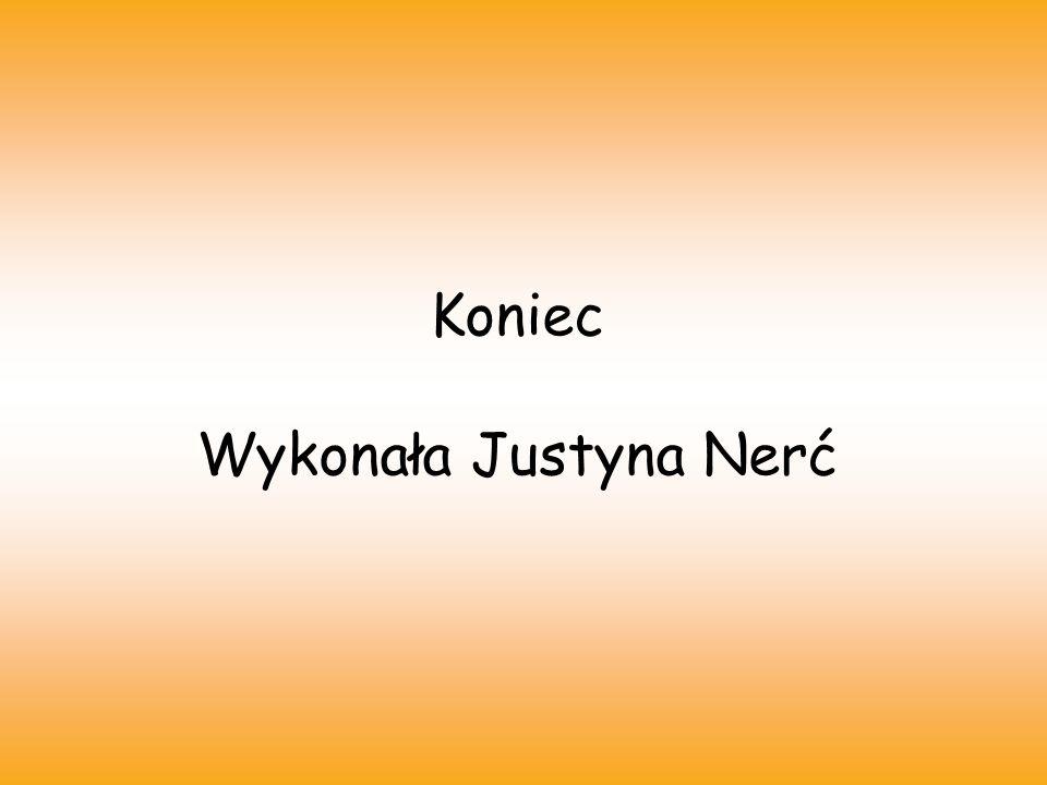 Koniec Wykonała Justyna Nerć