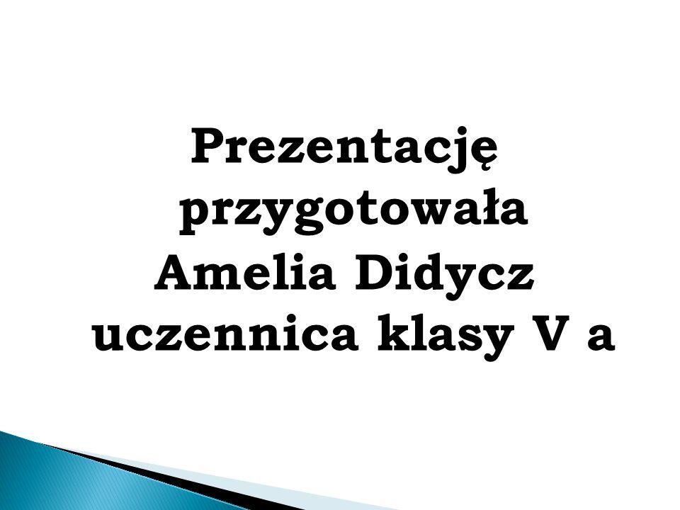 Prezentację przygotowała Amelia Didycz uczennica klasy V a