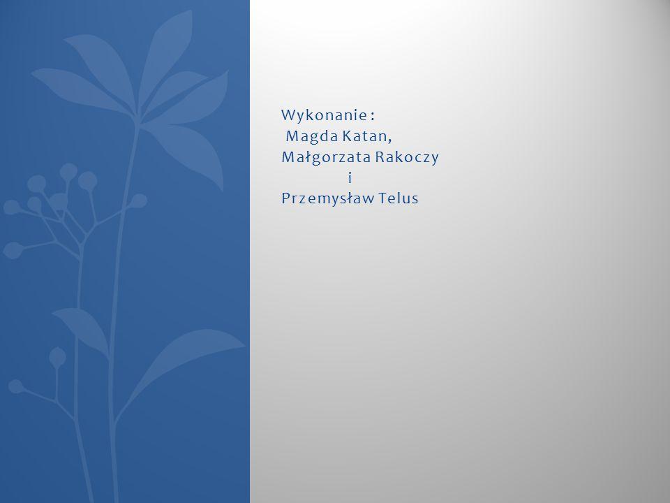 Wykonanie : Magda Katan, Małgorzata Rakoczy i Przemysław Telus