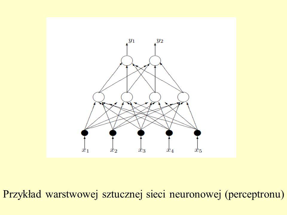 Przykład warstwowej sztucznej sieci neuronowej (perceptronu)
