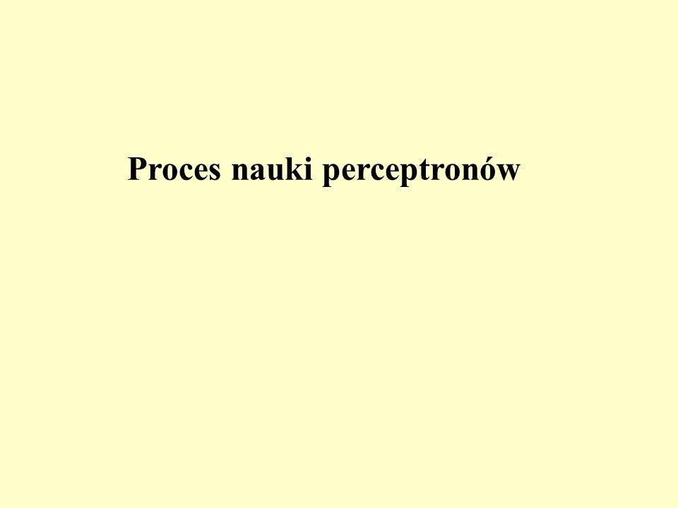 Proces nauki perceptronów