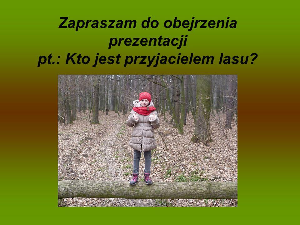 Zapraszam do obejrzenia prezentacji pt.: Kto jest przyjacielem lasu