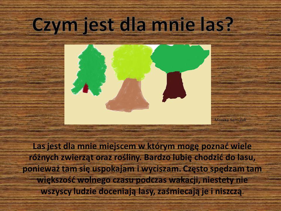 Czym jest dla mnie las Monika Samulak.