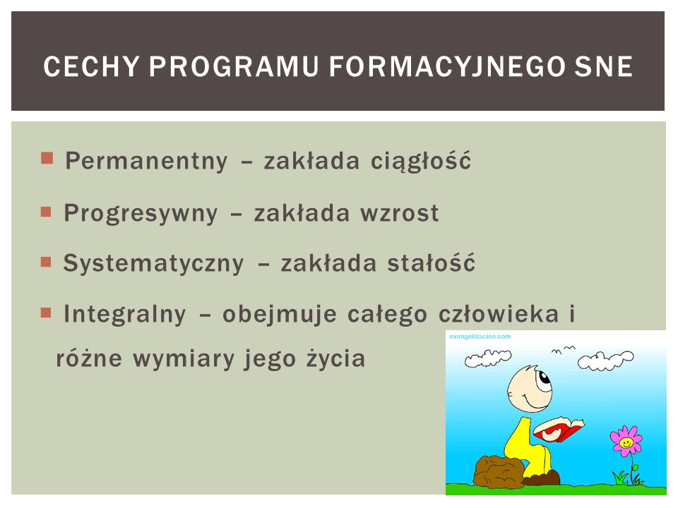 Cechy programu formacyjnego SNE