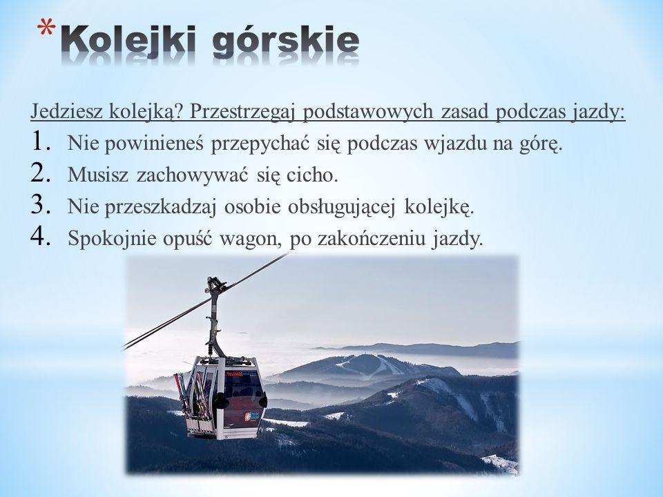 Kolejki górskie Jedziesz kolejką Przestrzegaj podstawowych zasad podczas jazdy: Nie powinieneś przepychać się podczas wjazdu na górę.