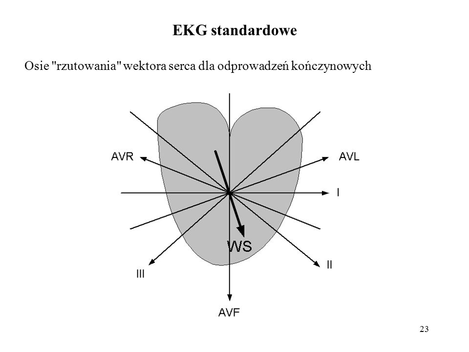 EKG standardowe Osie rzutowania wektora serca dla odprowadzeń kończynowych