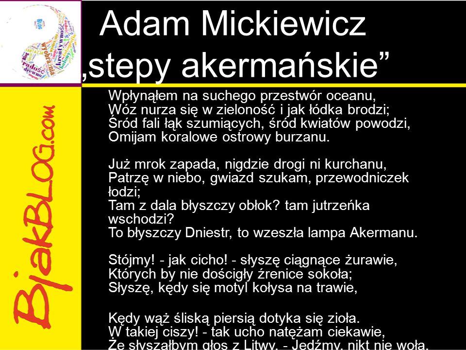 """Adam Mickiewicz """"stepy akermańskie"""
