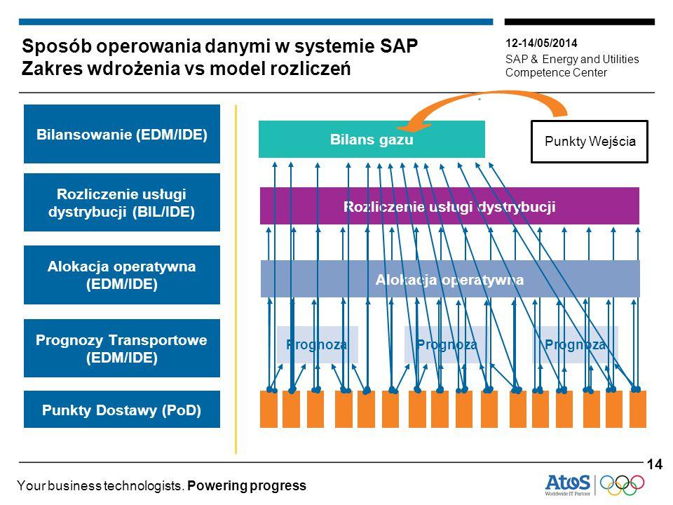 Sposób operowania danymi w systemie SAP Zakres wdrożenia vs model rozliczeń