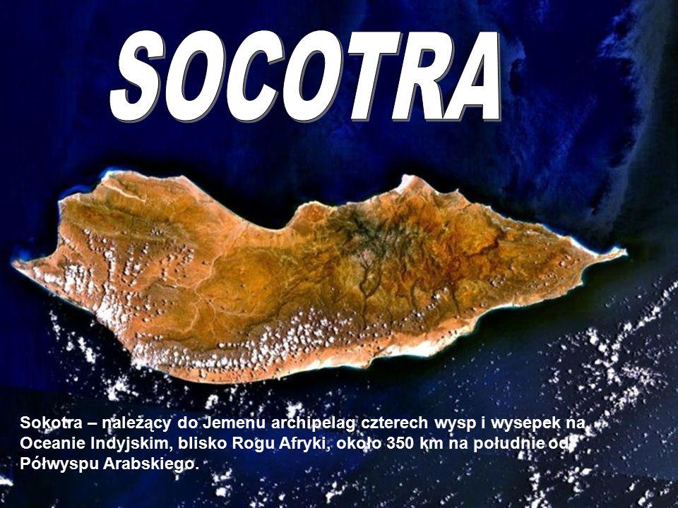 SOCOTRA Socotra.