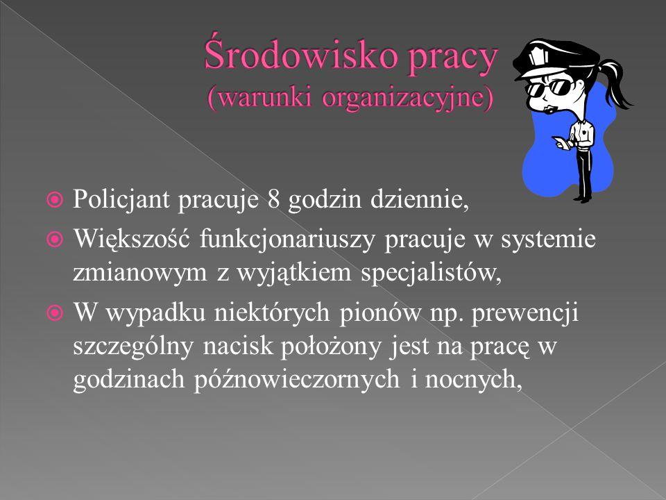 Środowisko pracy (warunki organizacyjne)
