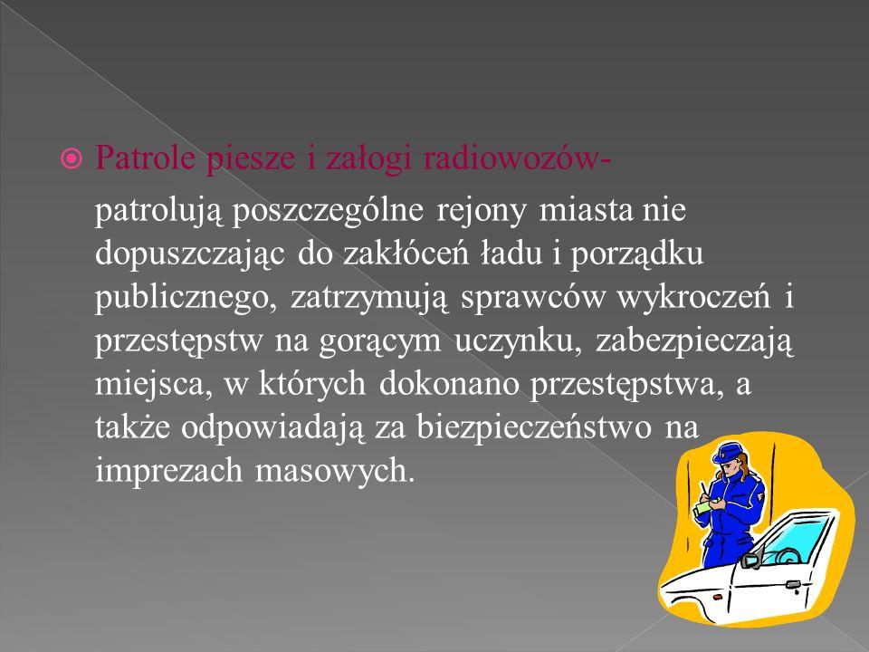 Patrole piesze i załogi radiowozów-