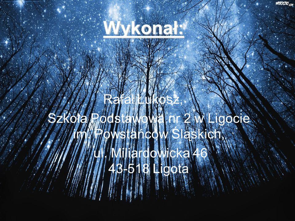 Wykonał: Rafał Łukosz, Szkoła Podstawowa nr 2 w Ligocie im.