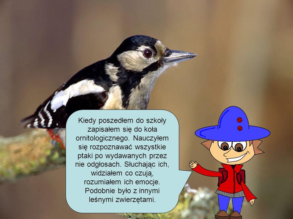 Kiedy poszedłem do szkoły zapisałem się do koła ornitologicznego