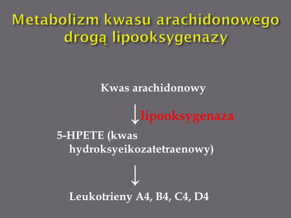 Metabolizm kwasu arachidonowego drogą lipooksygenazy