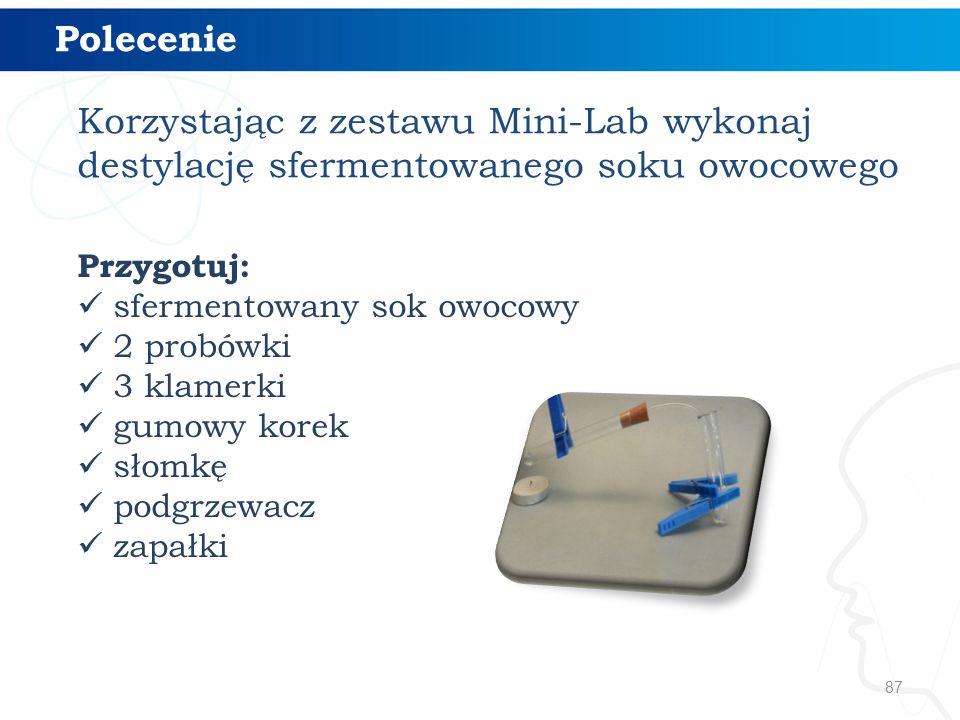 Polecenie Korzystając z zestawu Mini-Lab wykonaj destylację sfermentowanego soku owocowego. Przygotuj: