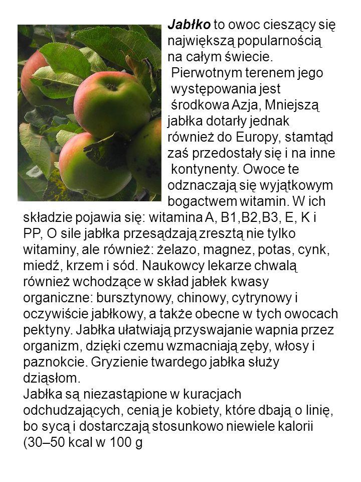 Jabłko to owoc cieszący się największą popularnością na całym świecie.