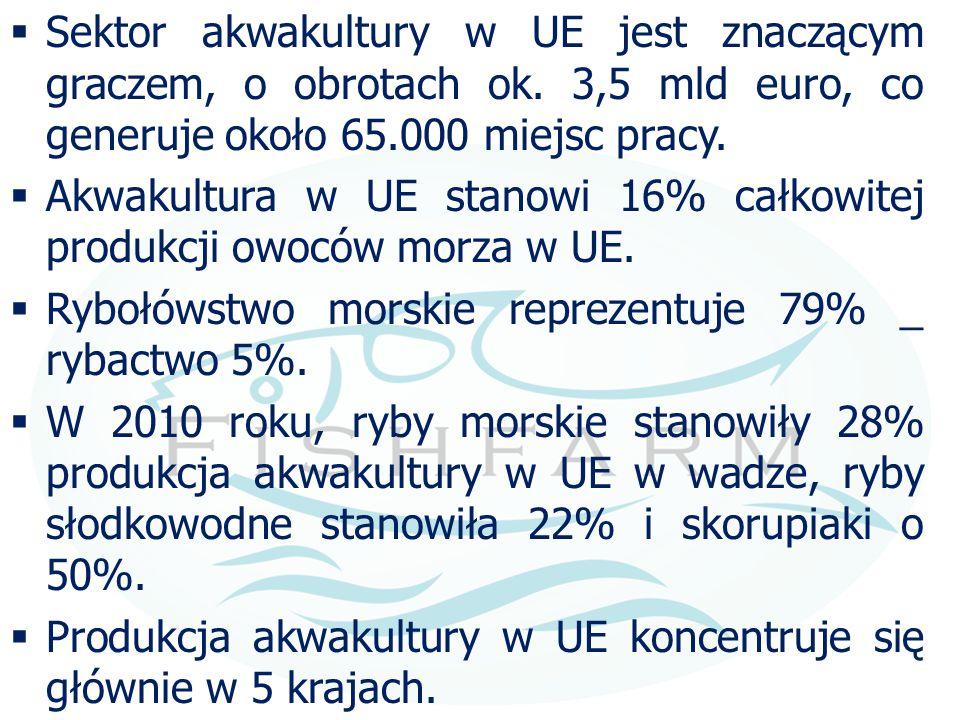 Sektor akwakultury w UE jest znaczącym graczem, o obrotach ok