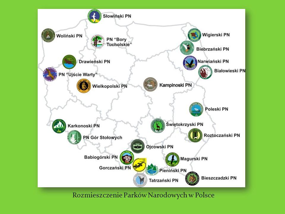 Rozmieszczenie Parków Narodowych w Polsce