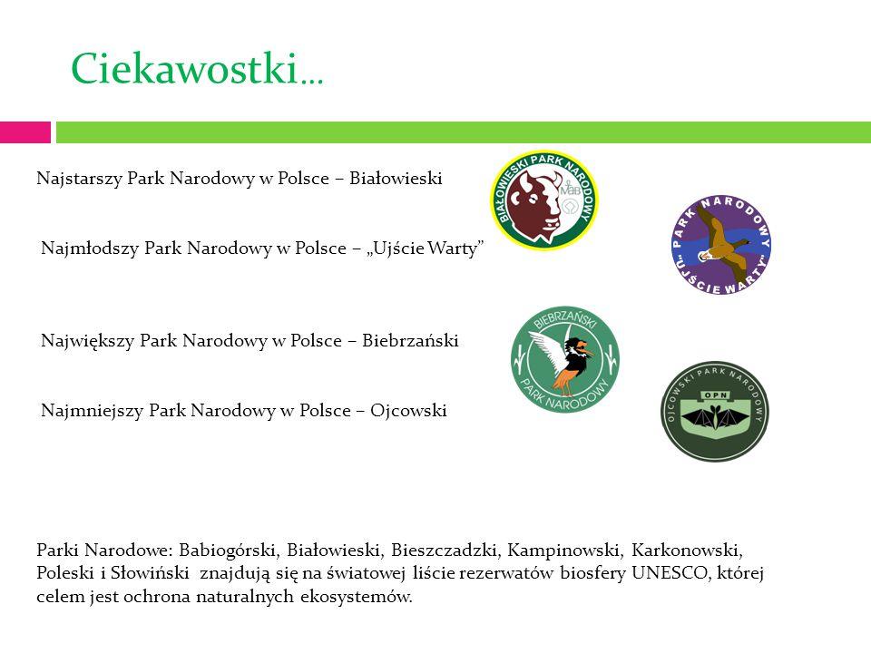 Ciekawostki… Najstarszy Park Narodowy w Polsce – Białowieski