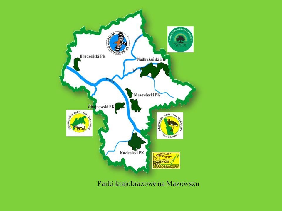 Parki krajobrazowe na Mazowszu