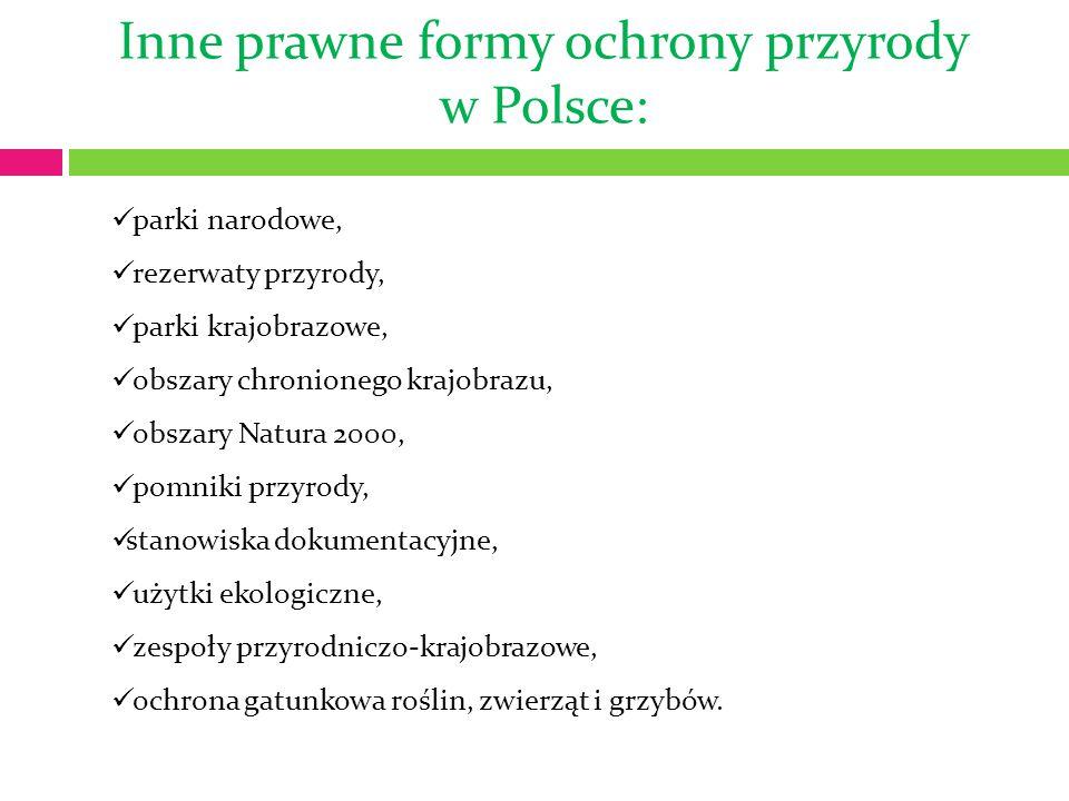 Inne prawne formy ochrony przyrody w Polsce: