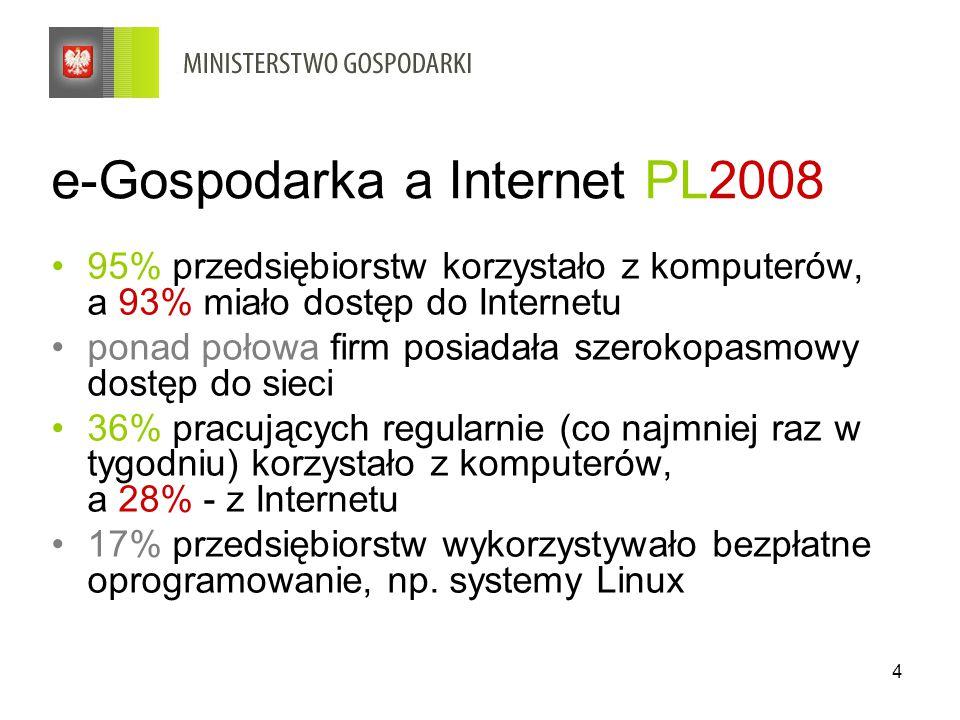 e-Gospodarka a Internet PL2008