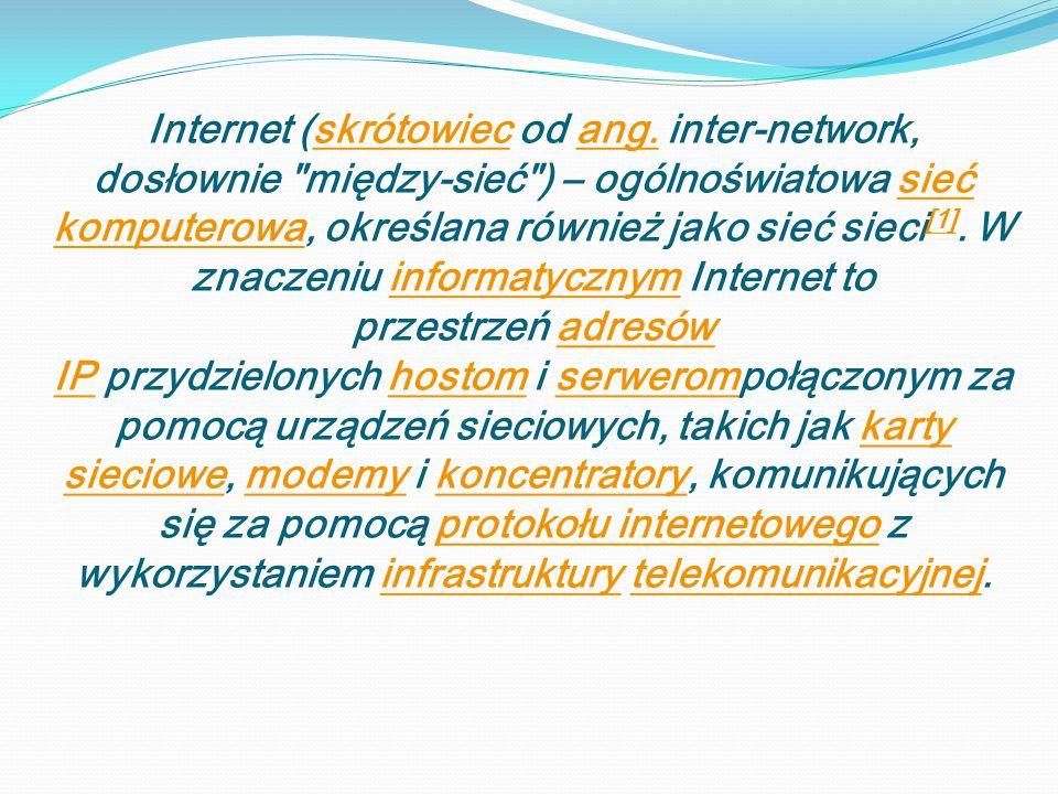 Internet (skrótowiec od ang