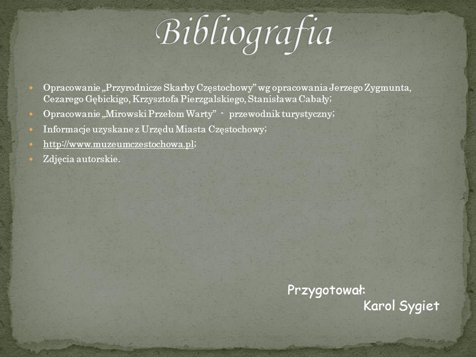 Bibliografia Przygotował: Karol Sygiet